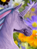 pretty_unicorn.png